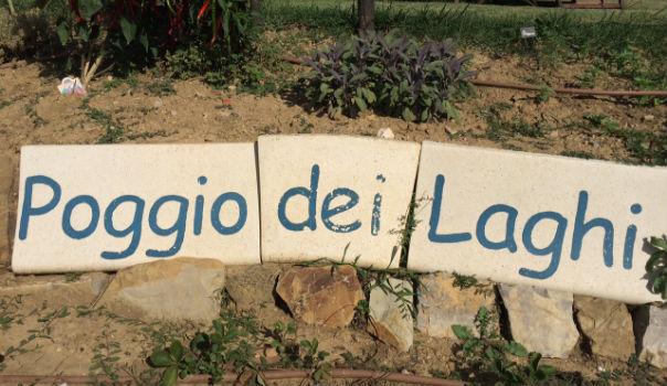 poggio-del-laghi-klaus-jeanette